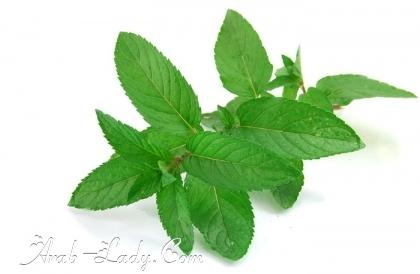 أعشاب ونباتات كثيرة نأكلها ولا نعرف فائدتها 137273809698