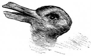 إختبري نفسك.. ماذا في الصورة أرنب ام بطّة؟