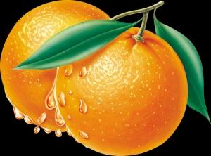 إحرق الدهون بفاكهة البرتقال !