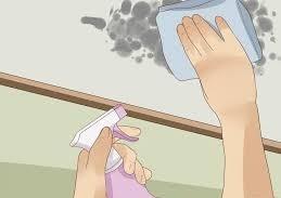 كيف تتخلصين من رطوبة وعفن السقف
