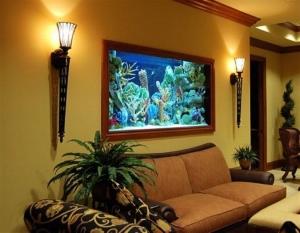 أحواض السمك جمالية راقية تضفي الجاذبية على منزلك